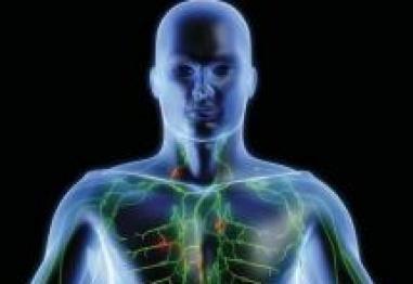 Невероятни факти за човешкото тяло – Част 3