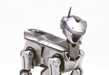 Куче робот в помощ на незрящите