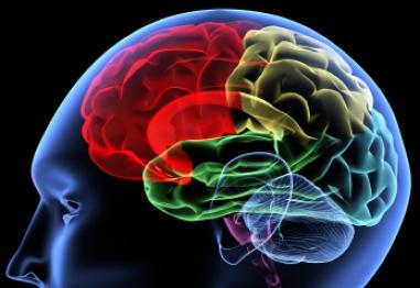 Възрастови промени при стареене на нервната система