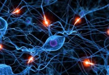 Интересни факти за множествената склероза