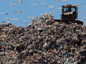 10 хил. дървета ще бъдат засадени при депото за отпадъци до Долни Богров