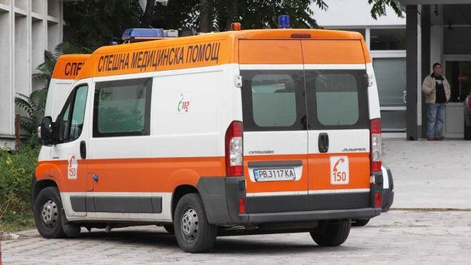 Питбул отхапа ухото на дете в Луковит