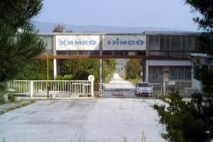 """БЕХ създаде фирма, с която ще купува """"Ремотекс"""" и """"Химко"""""""