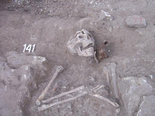 Откриха още два вампира край Враца