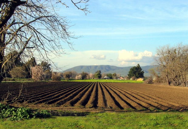 Български учени участват в голям европроект за биоземеделие