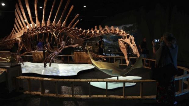 Откриха неизвестен досега динозавър