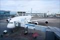 Над 30 полета бяха отменени на московските летища