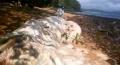 Океанът изхвърли неизвестно морско същество на плажа във Филипините