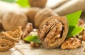 Американски експерти доказаха, че орехите подобряват мъжката плодовитост