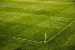 Тревното покритие на терена на стадион