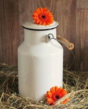 Фирми масово нарушават стандарта за българско кисело мляко по отношение