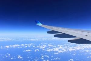 Частната индийска авиокомпания Jet Airways подари безплатни самолетни билети за