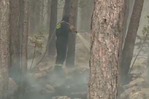 Снимка: Евакуираха туристи и жители в Хърватия заради горски пожари