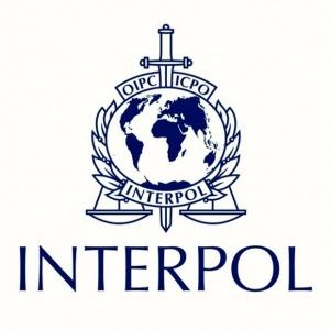 Интерпол е отстранил Турция от базата си данни, след като