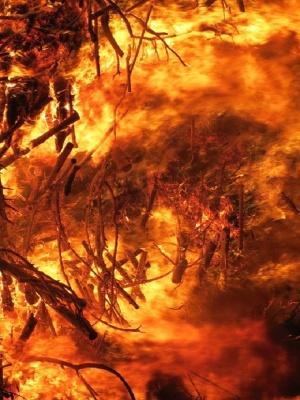 В Калифорния продължава борбата с горските пожари. Рекордната жеги в