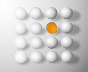 Започна поетапното унищожаване на яйцата, в които беше открит фипронил