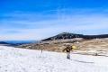 Есента дойде със сняг на Мусала и Черни връх