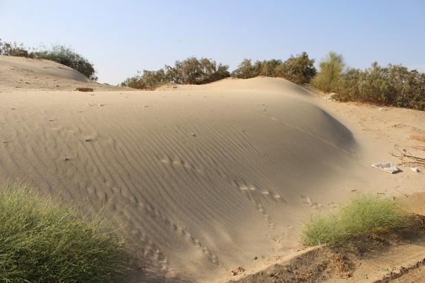 Археолог откри 400 загадъчни каменни структури в саудитската пустиня