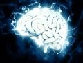 Учени разработват виртуални мозъчни клетки