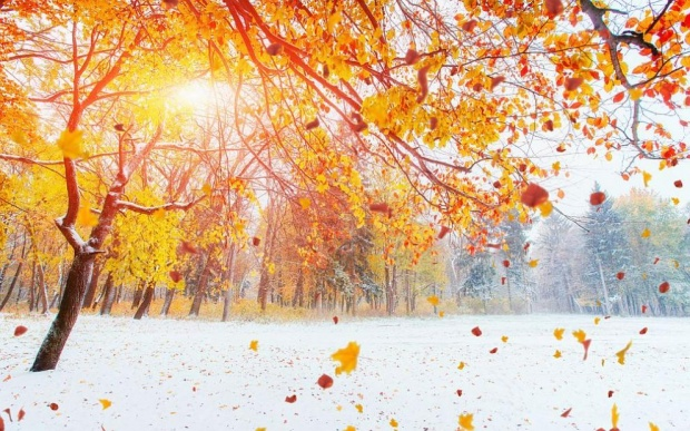 Хубаво време през уикенда, новата седмица започва със сняг