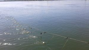 Съветът на ЕС определи риболовните възможности за ЕС в Черно