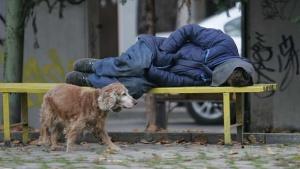 Тенденцията в последно време е броят на бездомните в столицата