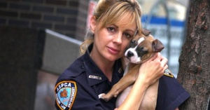 433 зоополицаи ще реагират на сигнали за инциденти с животни