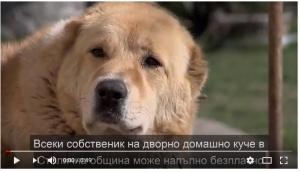 """От днес Столична община, чрез ОП """"Екоравновесие"""", стартира за трета"""