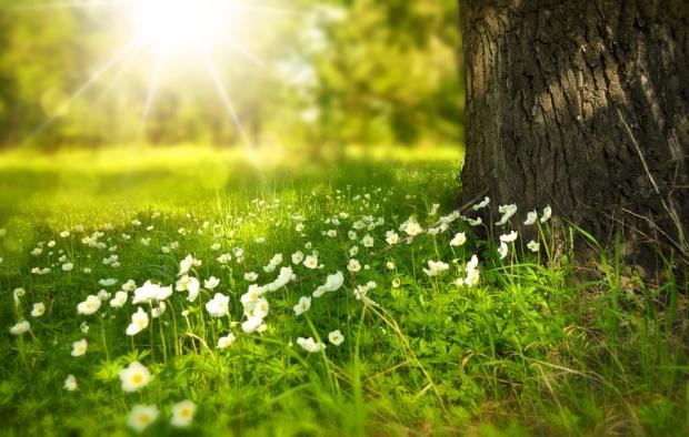 Предимно слънчево ще е времето днес