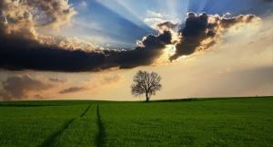 Днес над по-голямата част от страната ще преобладава слънчево време.
