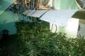 МВР предупреждава: Нов вид наркотик набира скорост на улиците