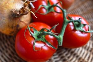 Днес био доматите ще имат специален ден на Фермерския фестивал