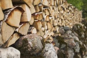 С повече от 20% поскъпнаха дървата за огрев във Велико
