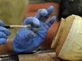 Татарска плячка на Калиакра спасена от българските археолози