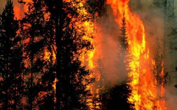 Риск от пожари заради топлото време у нас