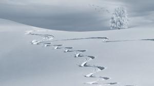 Първи сняг падна по високите части в Румъния. След като