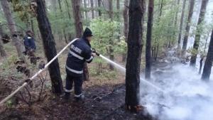 Пожарът над благоевградското село Дренково, който избухна снощи и се