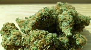 Задържаният с близо 70 грама марихуана наркоразпространителДимитър Я. се призна