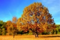Астро есента дойде днес