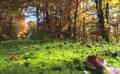 Есента дойде с температури между 15° и 20°