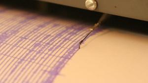 Земетресение с магнитуд 2,9 по скалата на Рихтер е регистрирано