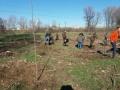 """Засаждат още нови дръвчета в парк """"Възраждане"""""""