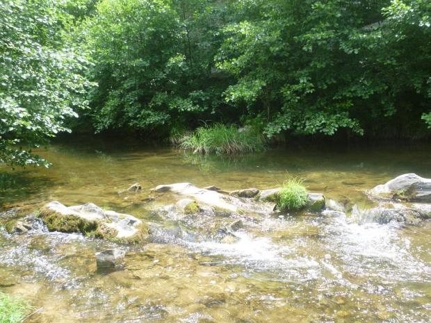 Искаме от Сърбия да ни информира за качеството на водата в р. Драговищица