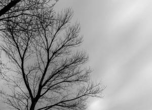 Днес времето ще се задържи предимно облачно и на отделни