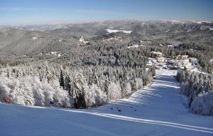 Снимка: Сняг и вятър затвориха Пампорово