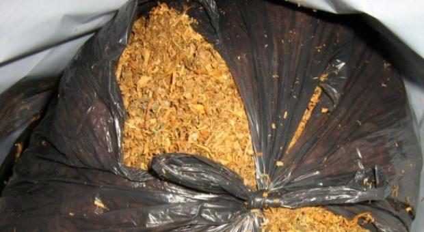 Спипаха стотици килограми тютюн без бандерол край Варна