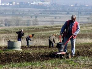 Снимка: 2500 анкетьори ще броят фермерите догодина