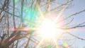 Слънчево, до 13 градуса днес