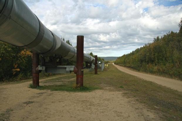 Жалба спира временно строежа на газовата връзка със Сърбия
