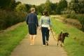 Една енергична разходка седмично помага значително на здравето